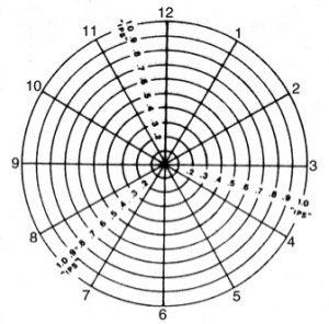 IPS Polar chart